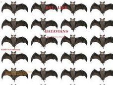 Batavians Lesson Plan