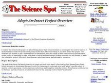Adopt-An-Insect Project Lesson Plan