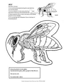 Bee and Bee Flower Worksheets Lesson Plan