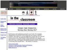 PRIME-TIME PRIMATES:Monkey See Monkey Do Lesson Plan