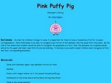 Pink Puffy Pig Lesson Plan