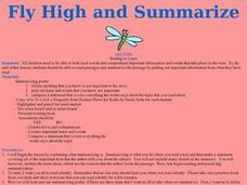 Fly High and Summarize Lesson Plan