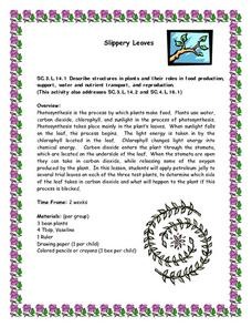 Slippery Leaves Lesson Plan