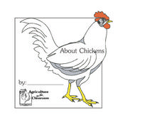 About Chickens Lesson Plan