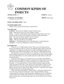 COMMON KINDS OF INSECTS Lesson Plan