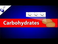 Carbohydrates Video