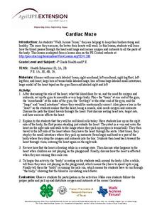 Cardiac Maze Lesson Plan
