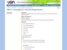 The Little Orange Rooster Lesson Plan