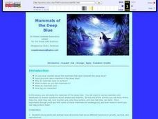 Mammals of the Deep Blue Lesson Plan