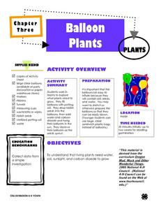 Balloon Plants Lesson Plan