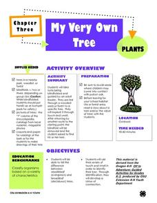 My Very Own  Tree Lesson Plan