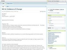 Evidence of Change Lesson Plan