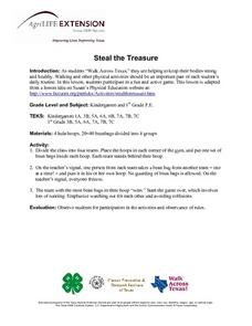 Steal the Treasure Lesson Plan