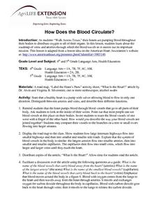 How Does the Blood Circulate? Lesson Plan