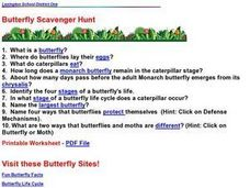 Butterfly Scavenger Hunt Lesson Plan