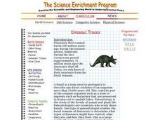 Dinosaur Traces Lesson Plan