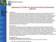 Adaptations of Fishes for Survival in Polar Environments Lesson Plan