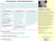 Sowing Seeds of Service Lesson Plan