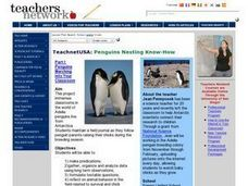 Penguins Nesting Know-How Lesson Plan