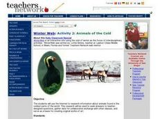 Animals of the Cold Lesson Plan