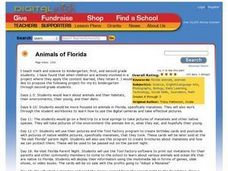 Animals Of Florida Lesson Plan