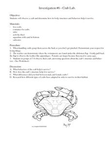 Crab Lab Lesson Plan