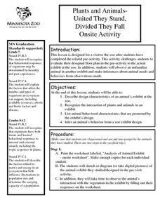Plants And Animals: United They Stand Divided They Fall Lesson Plan