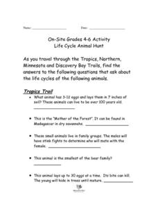 Life Cycle Animal Hunt-On Site Activity for Minnesota Zoo Lesson Plan