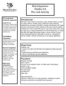 Bird Adaptations Pre-visit Activity for the Minnesota Zoo Lesson Plan