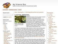 Cell Energy-Bubbling Plants Lesson Plan