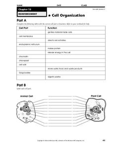 Cell Organization Worksheet