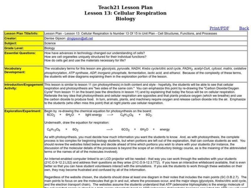 Lactic Acid Fermentation Lesson Plans Worksheets