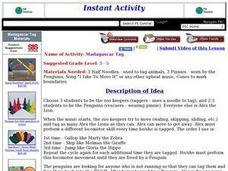 Madagascar Tag Lesson Plan