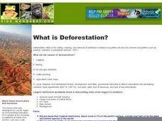 How Success Works: Reversing Tropical Deforestation: Agroforestry ...