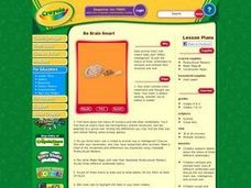 Be Brain Smart Lesson Plan