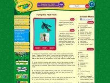 Flying Bird Fact-Finds Lesson Plan