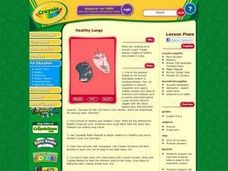 Healthy Lungs Lesson Plan
