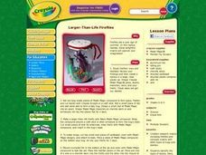 Larger-Than-Life Fireflies Lesson Plan
