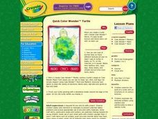 Quick Color Wonder Turtle Lesson Plan