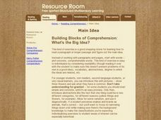 Building Blocks Of Comprehension: What Is The Big Idea? Lesson Plan