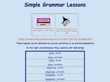 Simple Grammar Lessons Lesson Plan