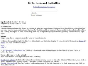 Birds, Bees, and Butterflies Lesson Plan