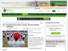 Physical Education Lesson: Winter Station Activities Lesson Plan