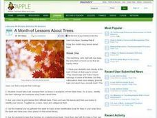 A Month of Lessons About Trees Lesson Plan