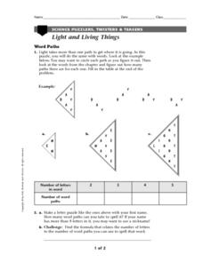 Light and Living Things Worksheet