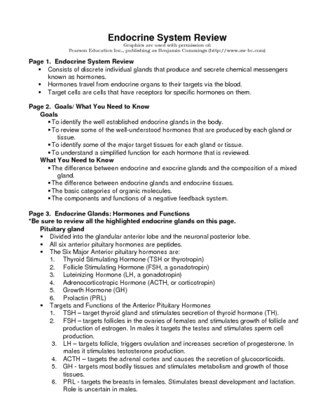 Endocrine System Review Worksheet For 9th 12th Grade