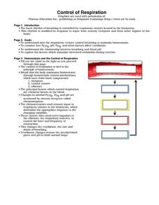 Control of Respiration Worksheet