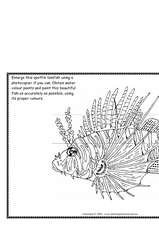 Spotfin Lionfish Worksheet