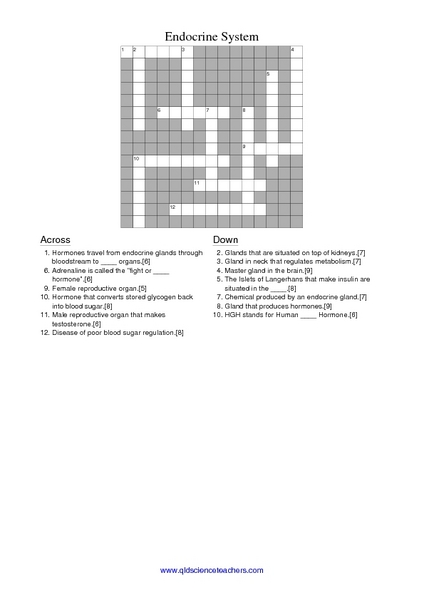 Endocrine System Crossword Worksheet For 7th 10th Grade