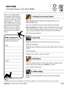 Zoo Tour: Use Your Senses, Test Your Skills Worksheet
